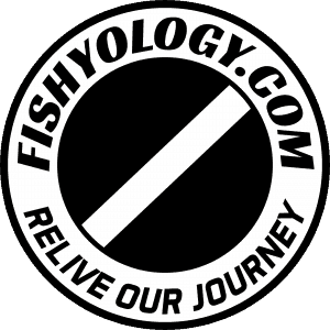 Fishyology